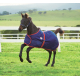 Couverture Weatherbeeta Foal Standard 1200D
