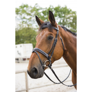 "C.S.O. ""Silver"" bridle, flash noseband"