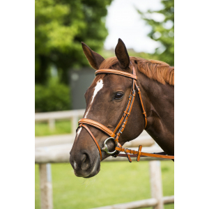 "NORTON LUXE ""Design"" bridle, flash noseband"