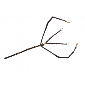 Collier de chasse élastique + martingale Norton