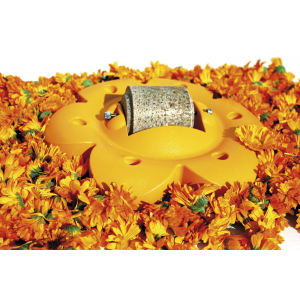 Support fleur Officinalis Lollyroll