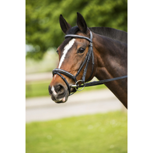 "Snaffle briddle with flash noseband RIDING WORLD ""Paillette"""