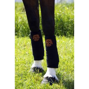 Bandes de polo Equi-Thème Technical Wear