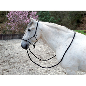 Norton Ethological halter with reins