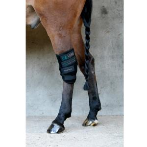 Horseware Ice Vibe hock boots