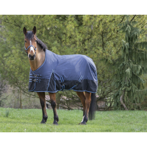 Riding World 600D rug