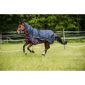 "NORTON ""600D"" Combo turnout rug"