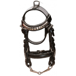 Norton Club Mini snaffle bridle