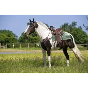 """""""Topeka"""" western saddle..."""