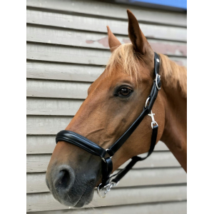 Norton Pro Anatomical head collar