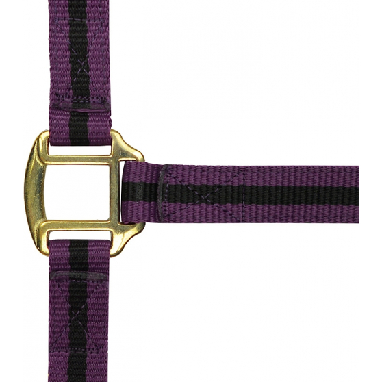 Licol Norton nylon doublé cuir bicolore