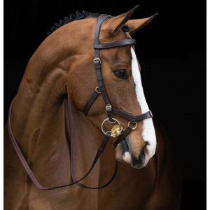 Bridon Micklem Multibride Horseware