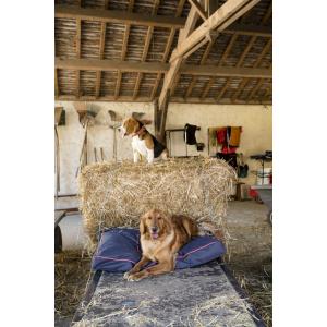 Matelas pour chien Diego & Louna