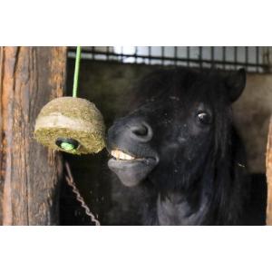 Corde pour bloc de foin Hippo-Tonic