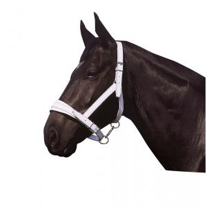 Chrome leather headcollar APOLLO