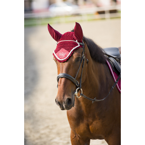 Equit'M Cristal Crown oornetje