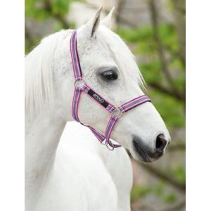 Licol Horseware Amigo PADD