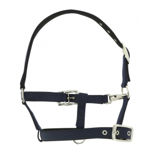 Norton Breathing Foal Halter PADD