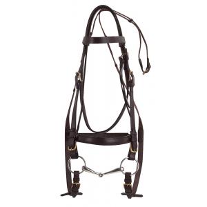 Norton Club bridle, draught horse